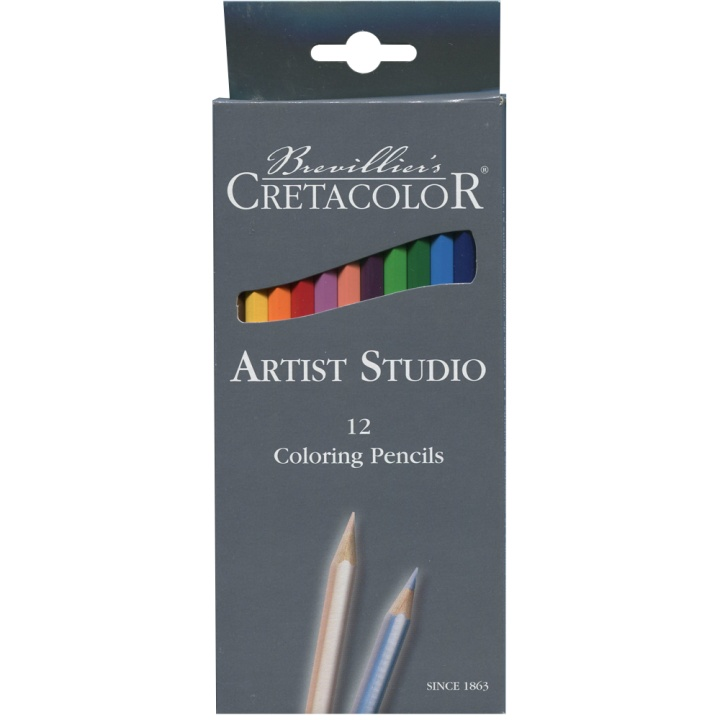 Artist Studio Colouring pencils 12-pack in the group Pens / Artist Pens / Colored Pencils at Pen Store (105029)