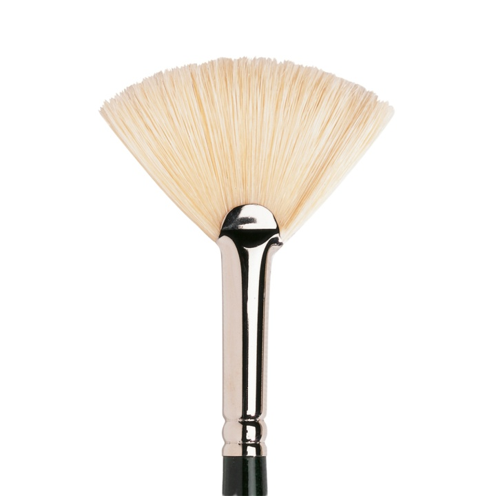 Winton Hog Brush Fan 8 in the group Art Supplies / Brushes / Natural Hair Brushes at Pen Store (107664)