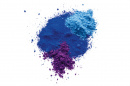 Pure Pigments (Price Group 3)